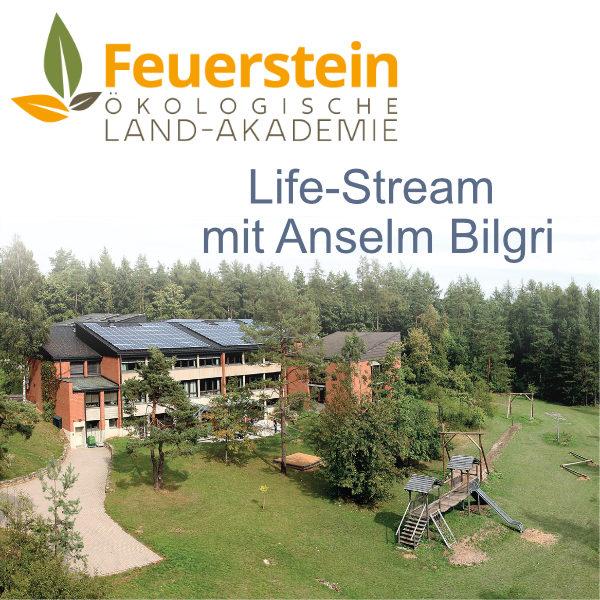 Live Stream mit Anselm Bilgir von der KLVHS